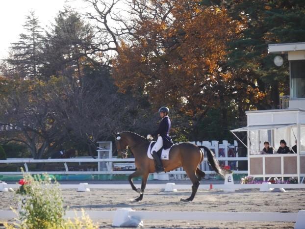 Dressage Scoring System  馬場馬術競技成績集計システム